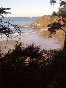 The beauty of the Oregon coast is the combination of beach, rocks and forest.