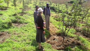 The apple orchard is young, but thriving. Apples have been imported to Ethiopia from Kenya and South Africa at great expense. We want to make Maji famous for its apples.